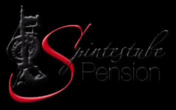 Pension Spintestube im Spreewald